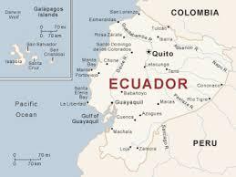 Magnetic Floor Sweeper Exporter in Ecuador