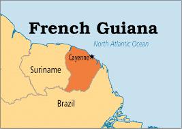Sorting Belt, Sorting Conveyor Belt Exporter in French Guiana